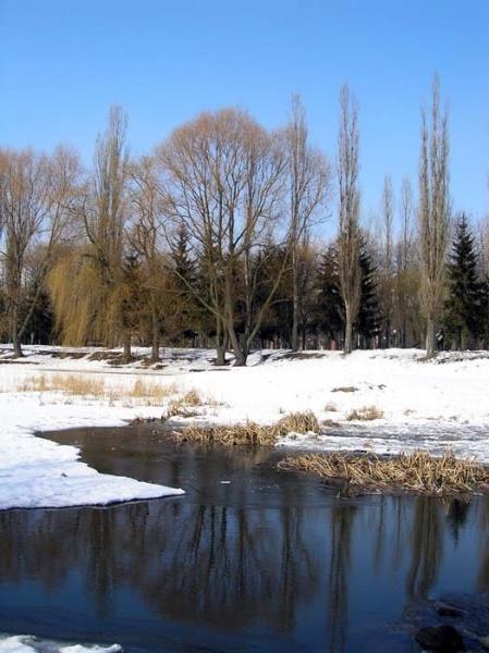 В Центральном городском парке Белгорода