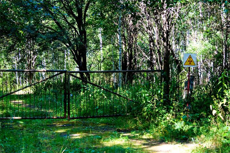 Ворота скотомогильника