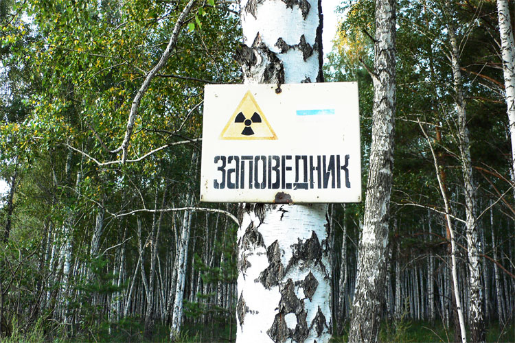 Радиоактивный заповедник
