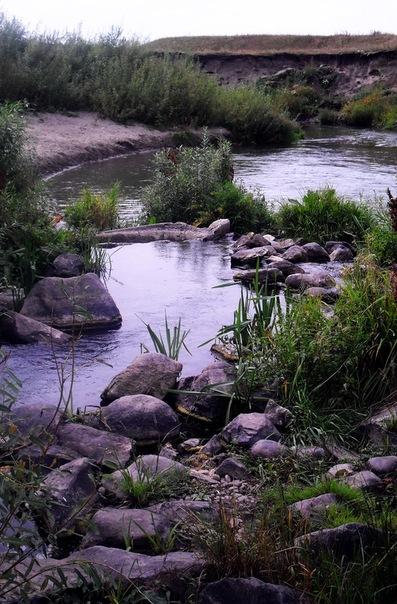 Алтайский край
